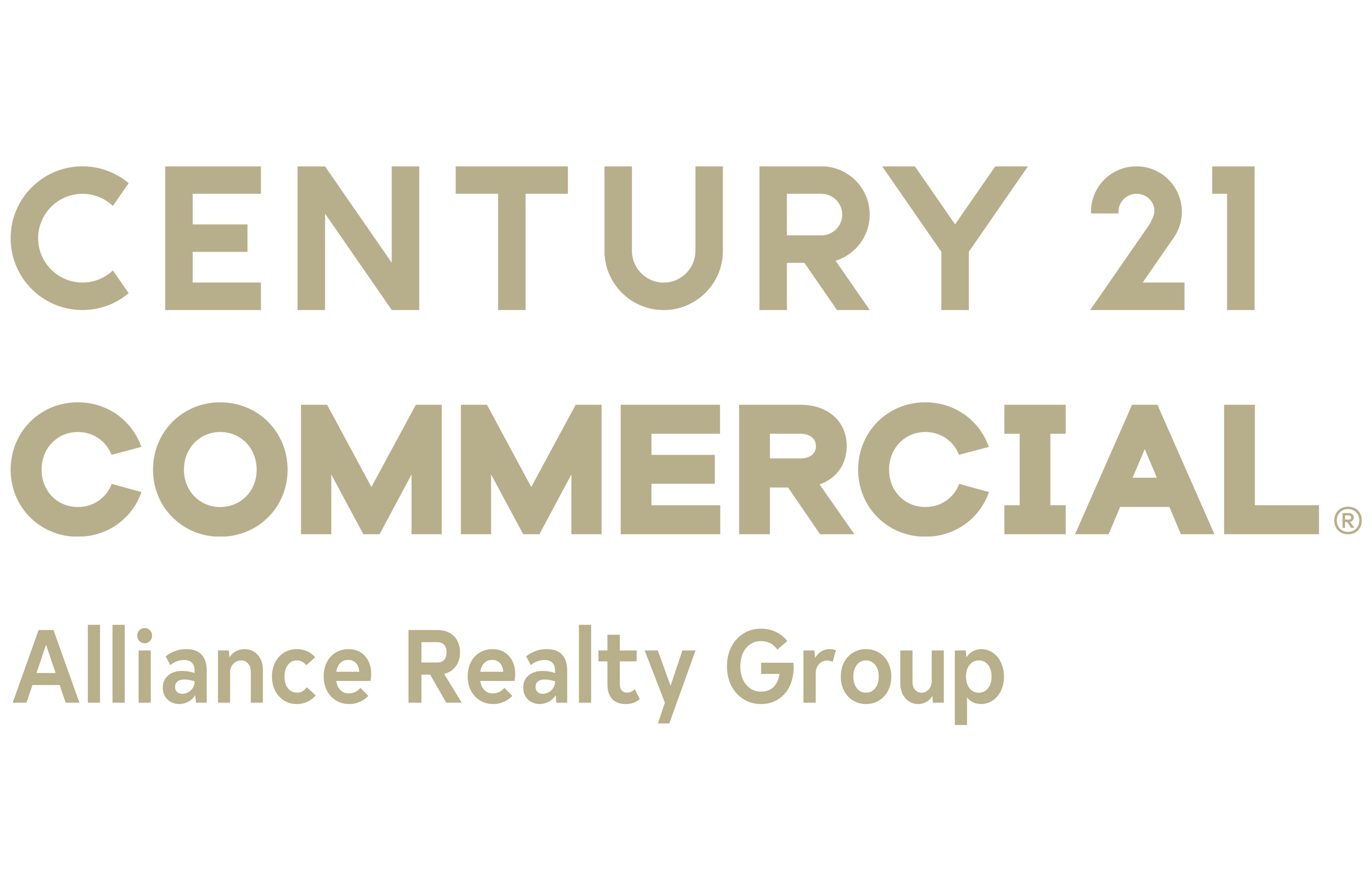 Alan Arnfield Jr of CENTURY 21 Alliance Realty Group logo