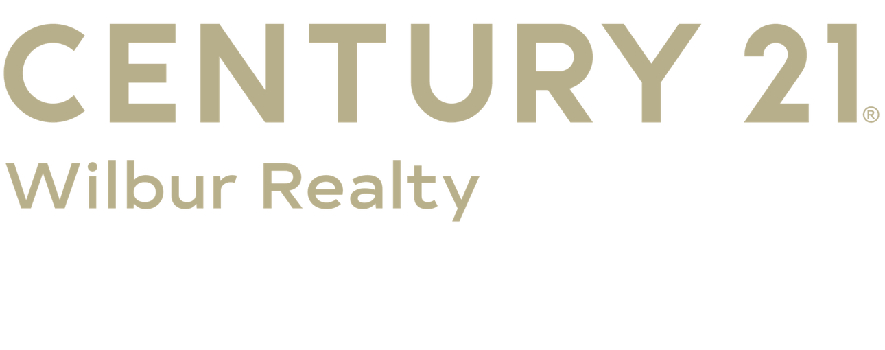 Louis Dudek of CENTURY 21 Wilbur Realty logo